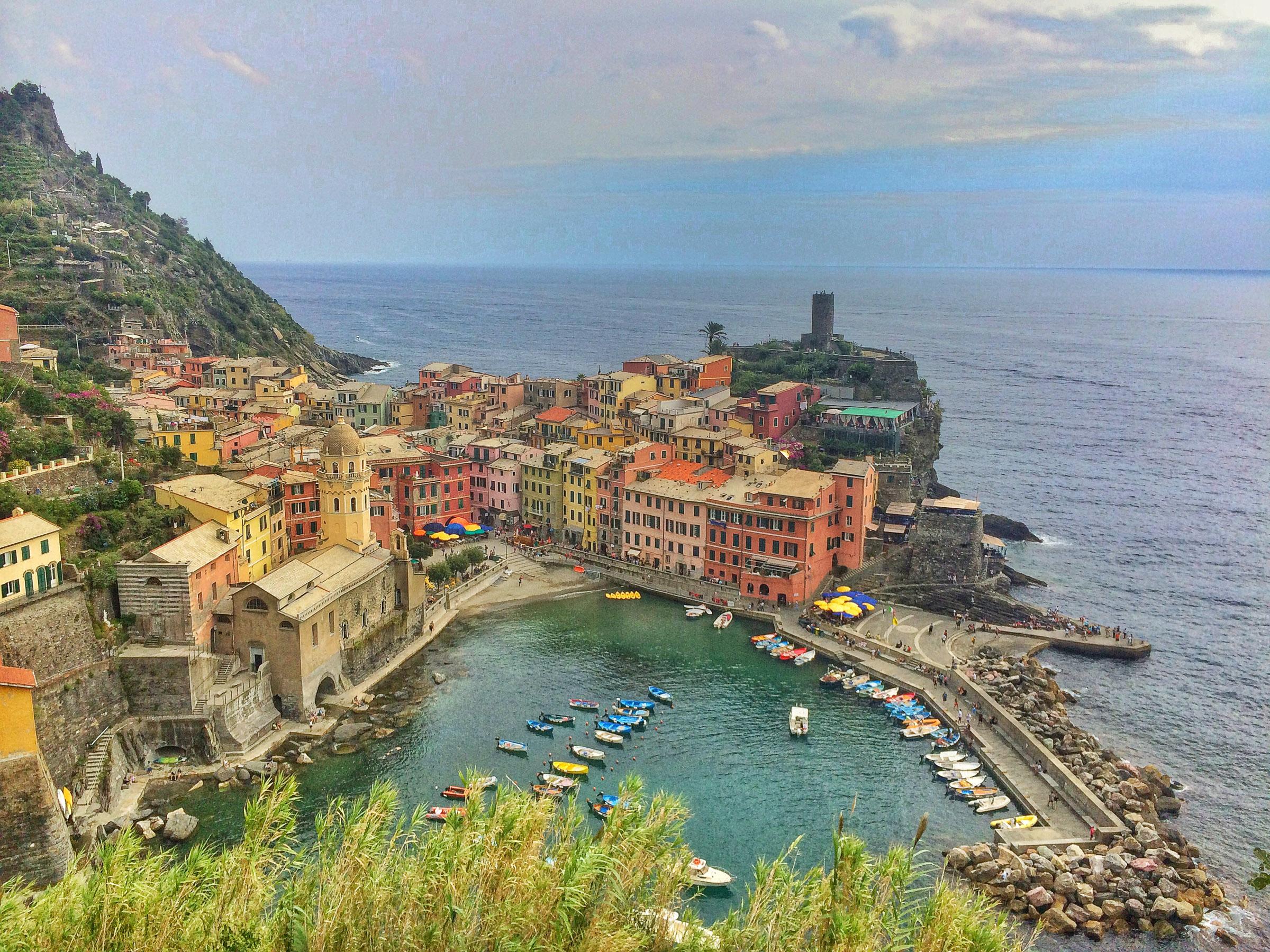 Animals, Bichon Frise, Dog, Europe, Italy, Pet, Travel, Tuscany, Wildlife, Yuki, smugmug, yukes
