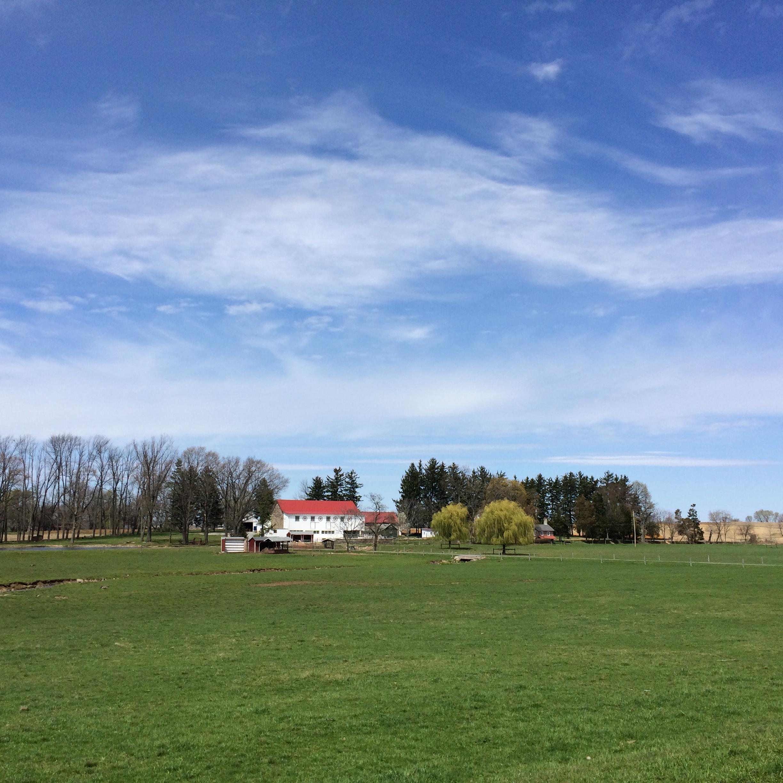Farm near Fleetwood